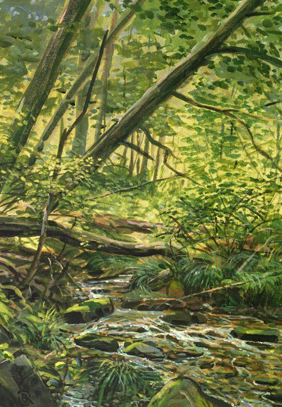 Brant-Gebhart-creek-114