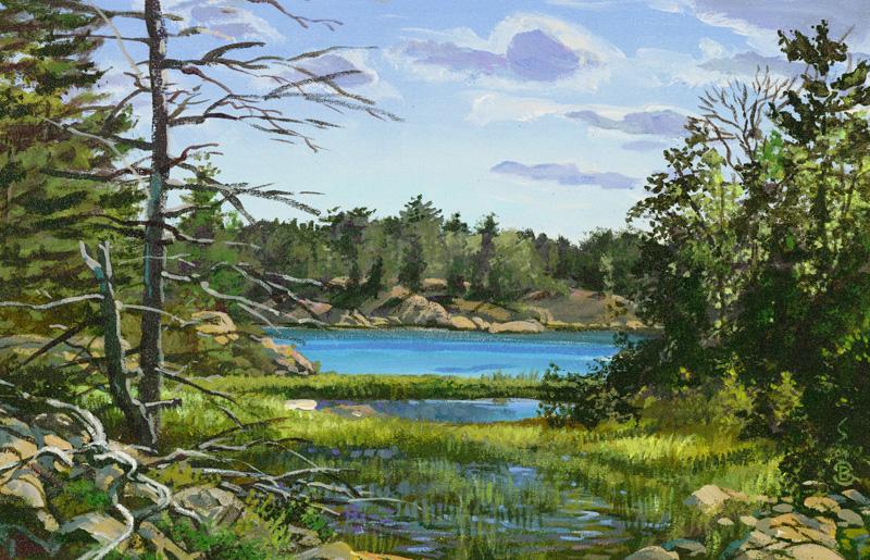 Lake-Huron-Brant-Gebhart-Collin-Lagoon-057