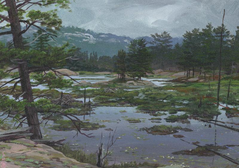 Lake-Huron-Brant-Gebhart-artist-lake-062
