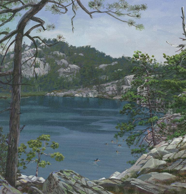 Lake-Huron-Brant-Gebhart-lake-topez-067
